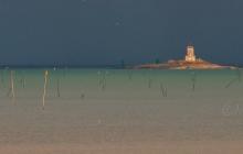L'ile Noire et les parcs à huitres