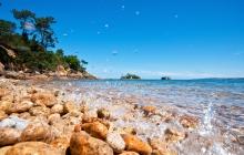 Mumuse au bord de L'eau ... Pause de midi