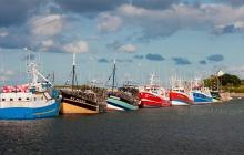 Le port - Fileyeurs / Caseyeurs