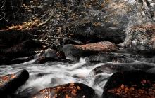 Huelgoat - La rivière d'argent