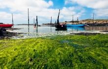 Port Mazou - Porspoder