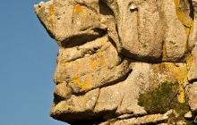 La couronne du roi Gradlon - Trégastel